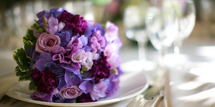 Wedding Guest Accomocations